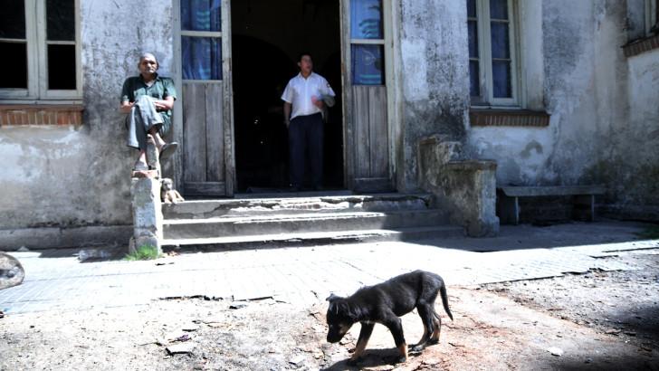 «Se protege más a los perros que a los niños» – Gladys Montero