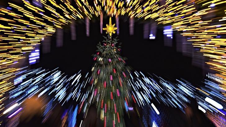 <em>Lengua curiosa</em><br>Navidad