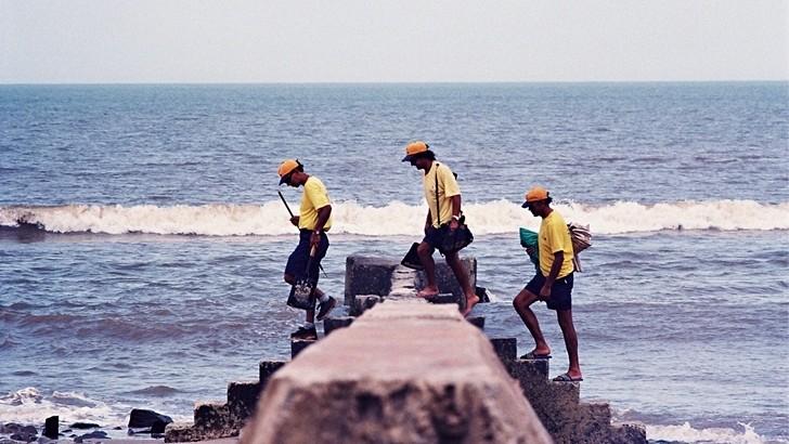 <em>Golpe de vista</em><br>Escalando las playas