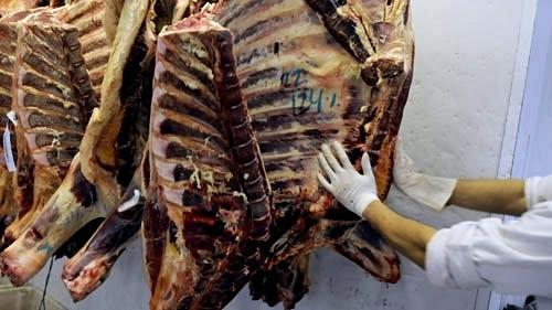 Carne que EEUU devolvió no está contaminada, dice veterinario