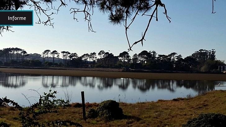 Intendencia de Canelones deberá pagar multa de más de $ 1 millón por no entregar información sobre proyecto urbanístico en el lago La Caleta