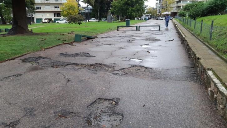 Zonas descuidadas del Parque de Villa Biarritz preocupan a vecinos