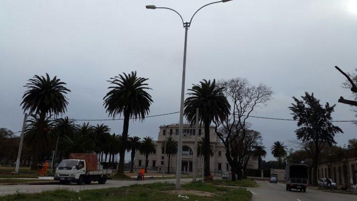 Inauguran doble vía de Larrañaga hasta el Hipódromo de Maroñas