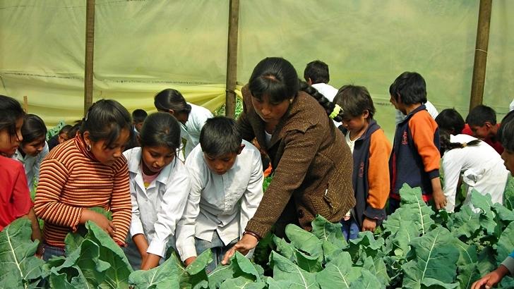 Enseñanza inclusiva en Bolivia y el alto costo de las prendas <em>low cost</em> en Bangladesh