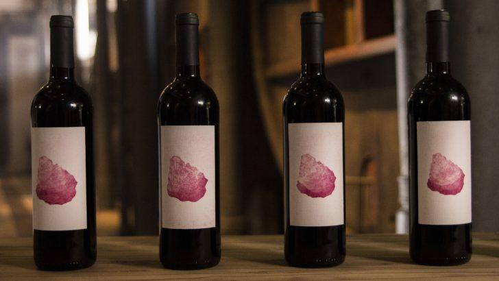 Vinos del Uruguay lanza campaña <em>Vinos del Uruguay. Son lo más grande que hay</em>