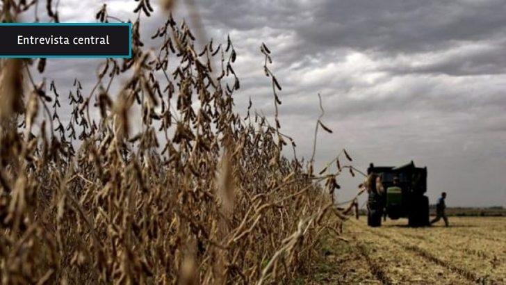 Mario Piacenza (MGAP): Uruguay desarrolla una soja para consumo humano para exportar a China y ser el primer país que vende ese producto al gigante asiático