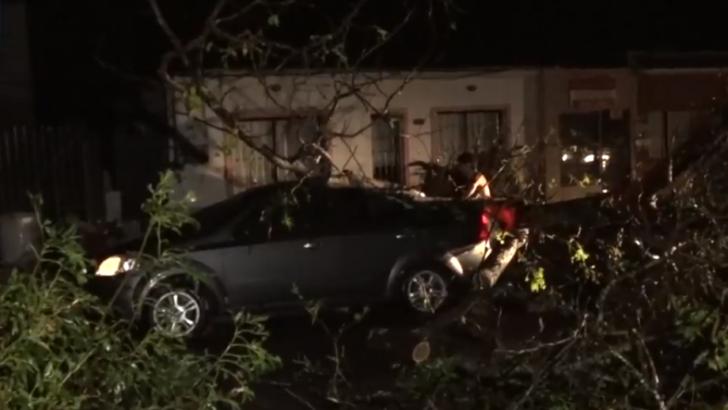 <em>Turbonada</em><br>San Carlos parecía una ciudad «bombardeada», dice intendente de Maldonado