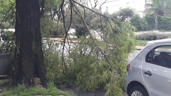 ¿Cómo quedó Montevideo después de la tormenta?