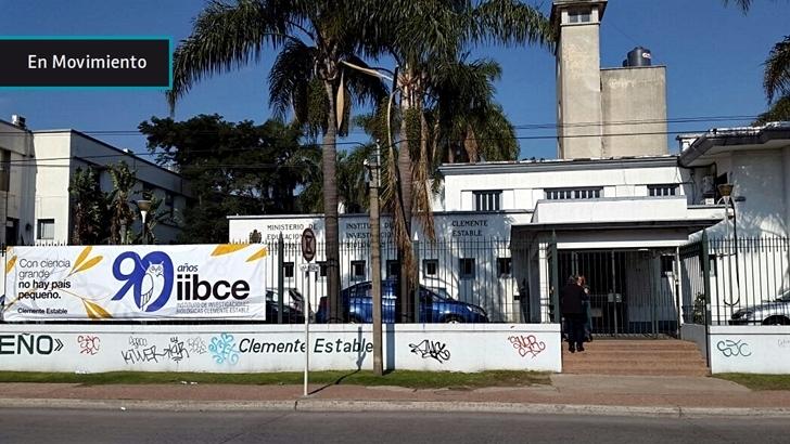 90 años del IIBCE: Así es por dentro la institución pionera de la investigación científica en Uruguay