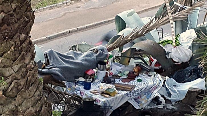 Personas en situación de calle se instalan en las Canteras del Parque Rodó