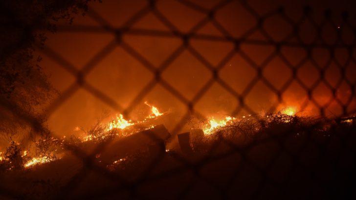 """Desde Galicia: """"Verdaderas mafias se dedican a provocar estos incendios"""", dice Alicia Raggio"""