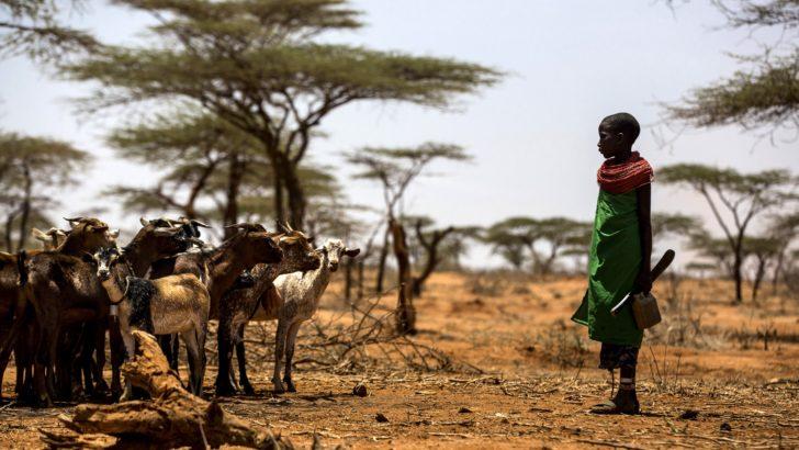 Lubetkin (FAO): «El hambre se resuelve afrontando el cambio climático, la migración y los conflictos armados»