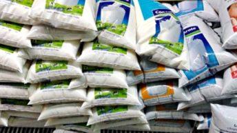 Comitiva brasileña viaja a Uruguay para corroborar procedencia de productos lácteos