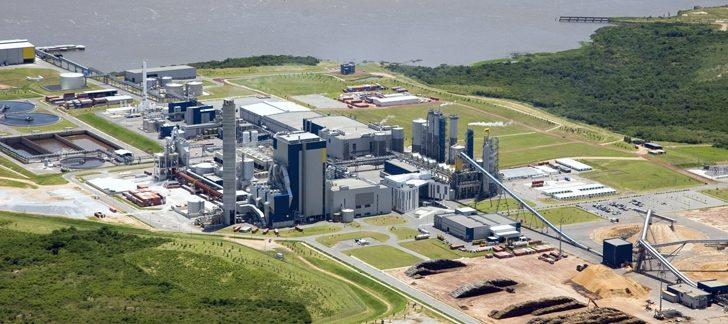 ¿Cómo está el complejo forestal y de la celulosa en Uruguay? ¿Qué perspectivas tiene luego del acuerdo con UPM?