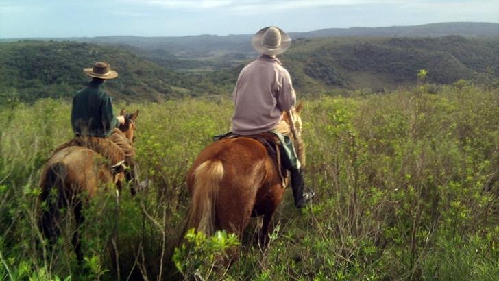 Quebradas del Norte: Un joven productor francés que se enamoró del campo uruguayo y con su familia innova en su predio