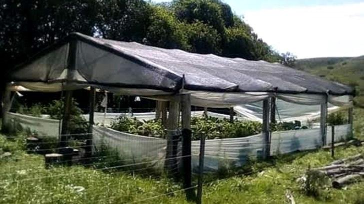 <em>Conexión Interior</em>: Las Serranas, mujeres rurales organizadas en Bañado de Rocha
