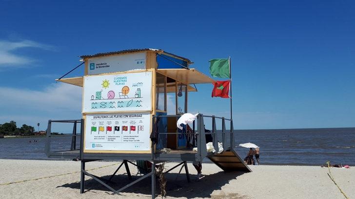 Playas de Montevideo con cianobacterias