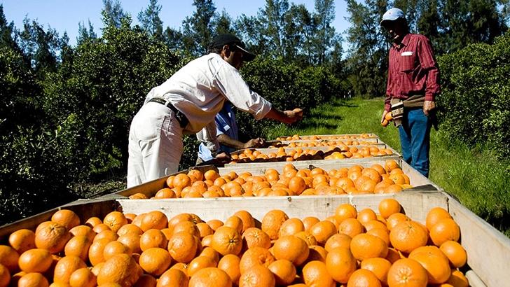 Gobierno presentó proyecto para brindar asistencia financiera a Caputto, aunque hay una cuestión de fondo de «mala administración» y «chantaje empresarial»