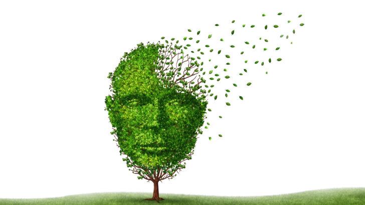 <em/> Taller de psicoeducación para familiares de personas con demencias </em> en el Hospital Británico