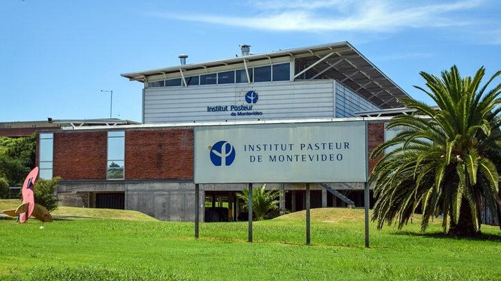 Investigación del Institut Pasteur de Montevideo en colaboración con EEUU disipó dudas sobre efectividad de fármaco contra leucemia