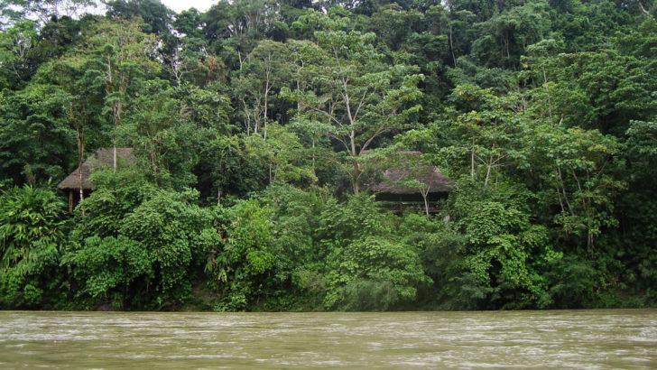 <em>Un mate con</em> Eduardo Viola sobre la deforestación de la Amazonia (La Canoa T02P72)