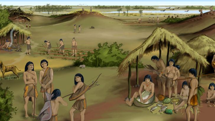 <em>Paisaje</em>: Cerritos de indios (La Canoa T02P105)