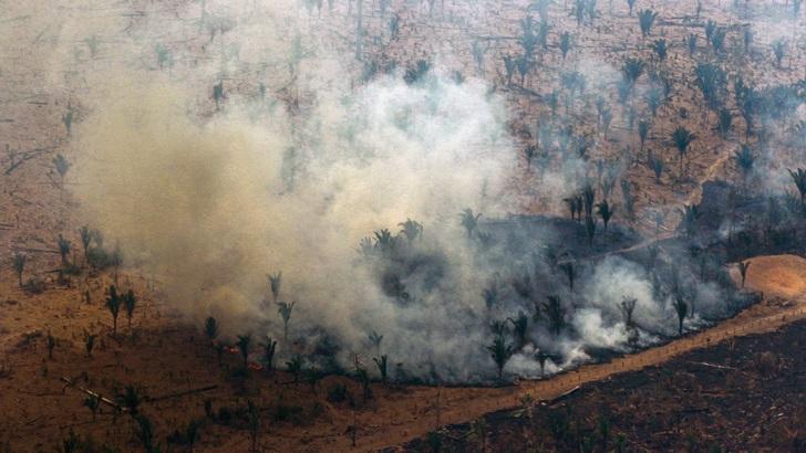¿Cuánto está afectando a Bolsonaro el fuego en la Amazonia?