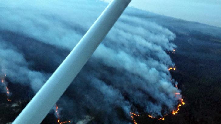 Incendio en La Esmeralda, Rocha: Bomberos evacuó a los habitantes del balneario