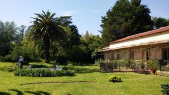 <em>Paisaje</em>: Quinta Capurro, en Santa Lucía, Canelones (La Canoa T02P175)