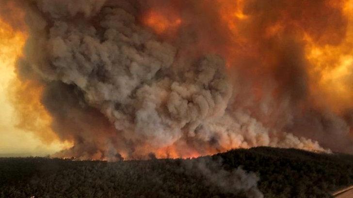 Los incendios en Australia no ceden: ¿Cómo se vive en Sidney?