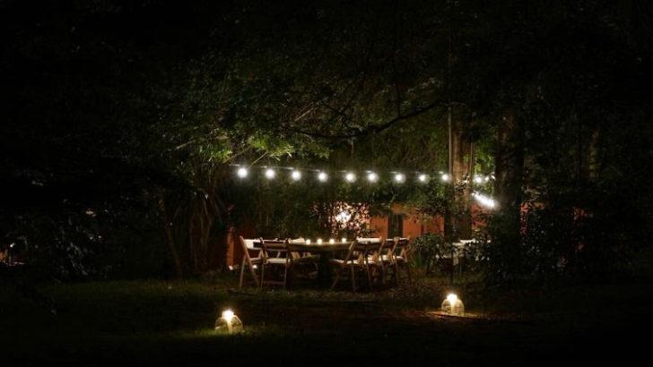 Cenas en el bosque en Punta Ballena (T03P01)