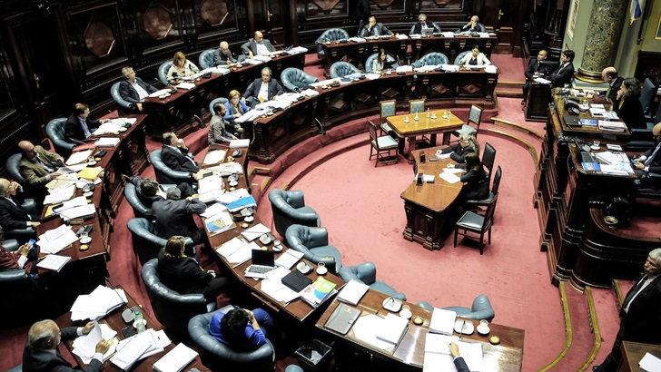 Perfiles de nuevos parlamentarios: Amanda Della Ventura, senadora por la Vertiente Artiguista