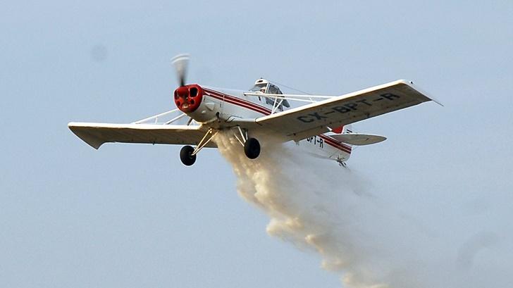 Así es el operativo con aviones fumigadores que Uruguay prepara para combatir posible plaga de langostas