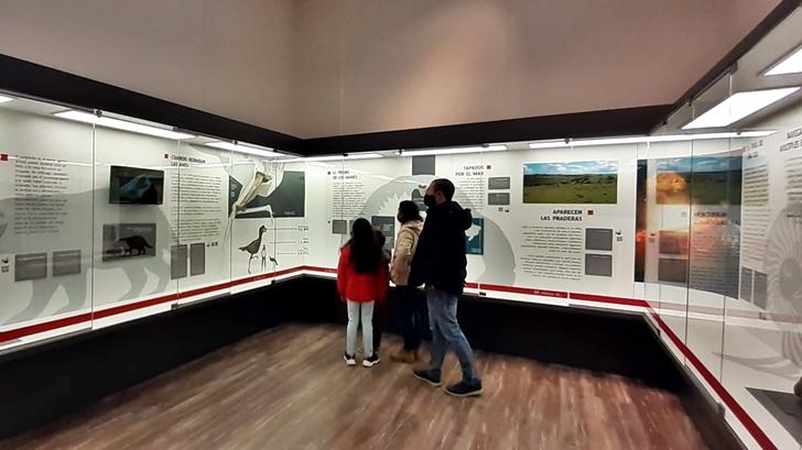 <em>La Conversación</em>: Rosario Castellanos con Javier González, director del Museo de Historia Natural