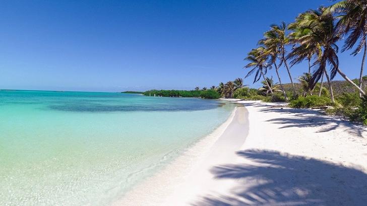 <em>Tripulacción</em>. Viajar en pandemia: El Caribe