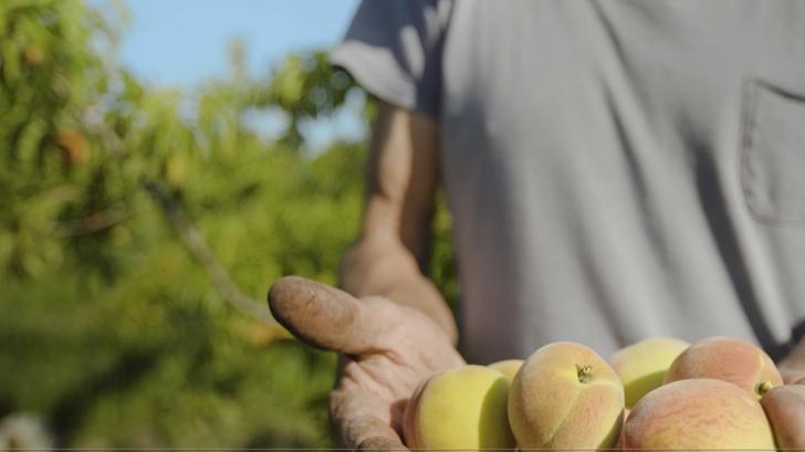 <em>Conexión Interior.</em> La agroecología: Una de las «vías de esperanza» para el futuro de la humanidad
