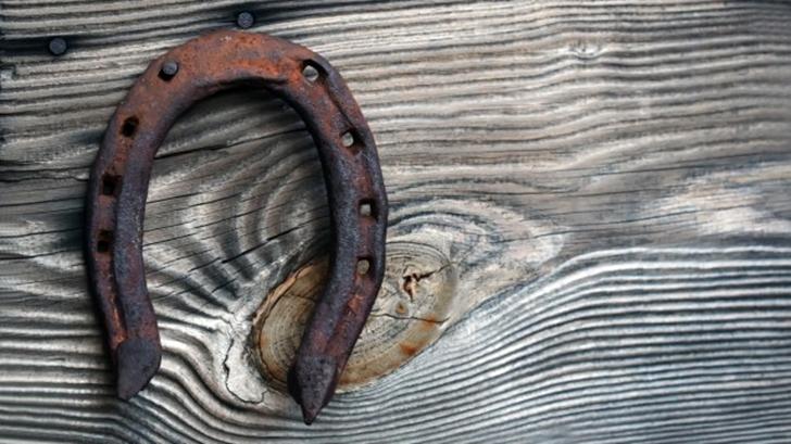 <em>La Conversación</em>: El arte de poner herraduras a los caballos, con Patricio Guzmán