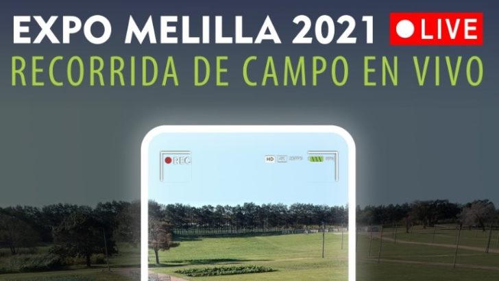 Expo Melilla en vivo
