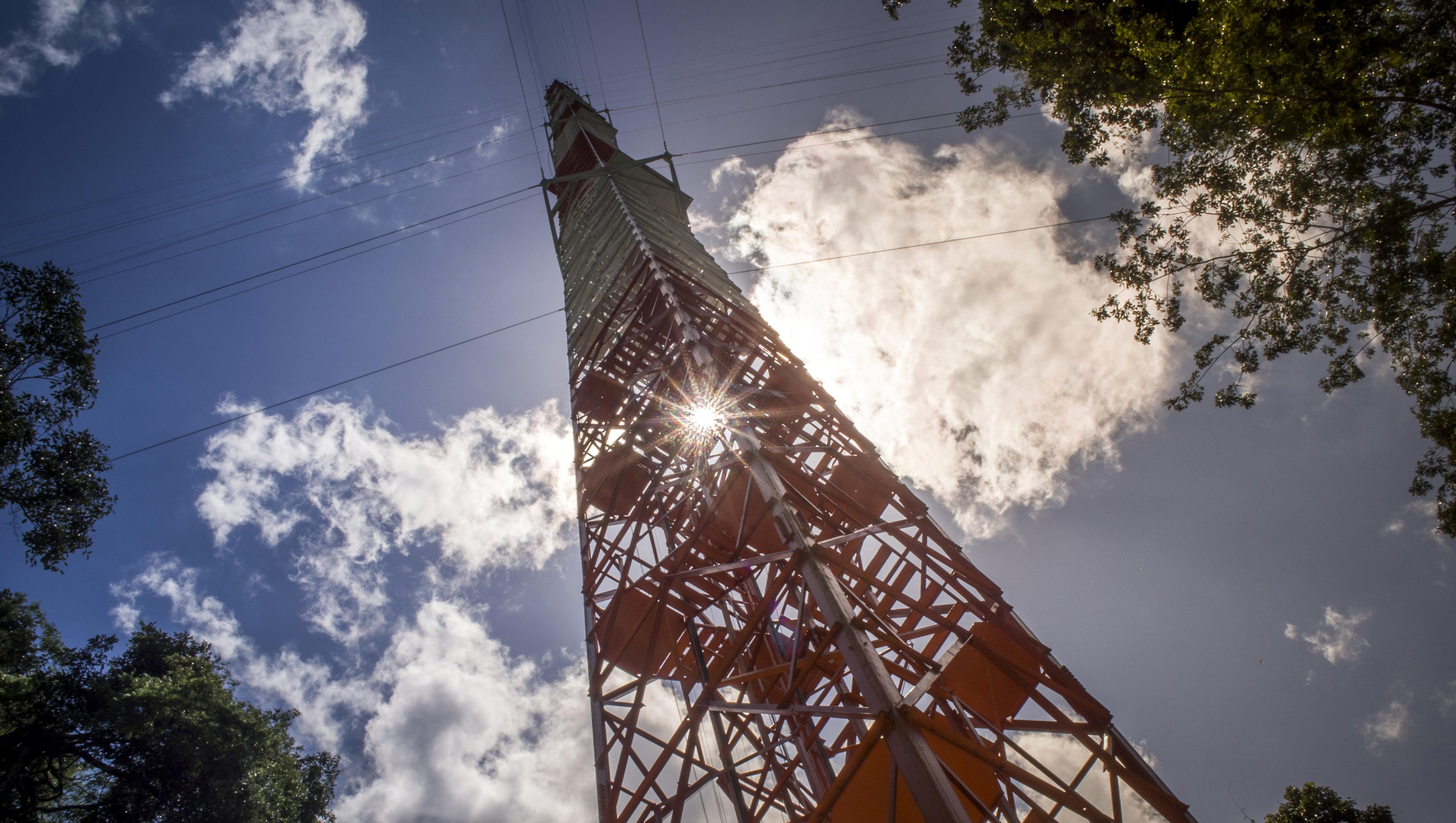 Una «Torre Eiffel» en la Amazonia para estudiar el cambio climático