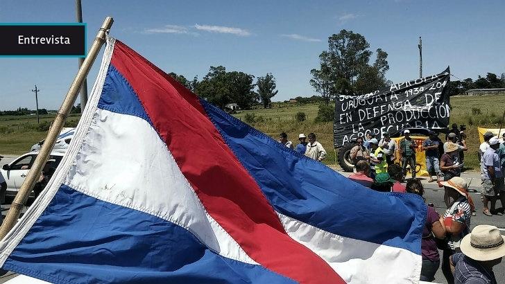 Productores de San José niegan fin político de protestas: «Quieren desvirtuar y sacar de contexto la movilización»