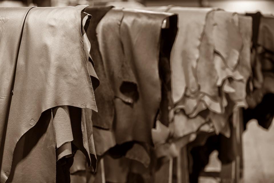 Crisis en la industria curtidora uruguaya: Causas y perspectivas