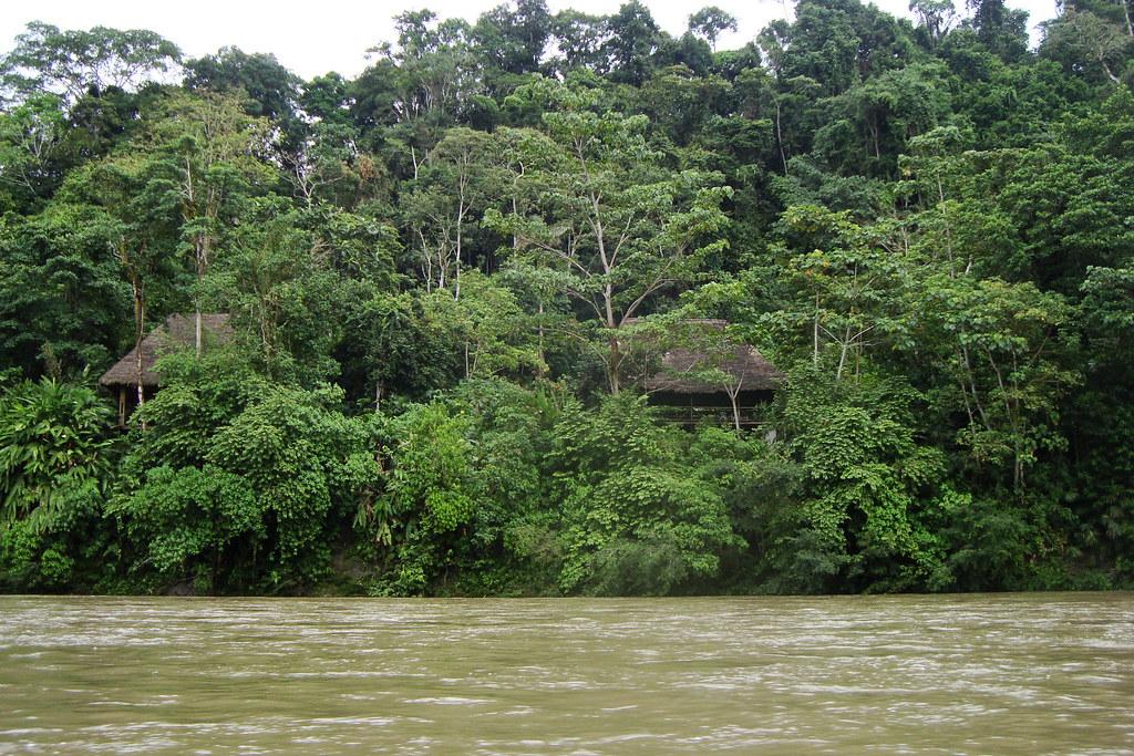 Un mate con Eduardo Viola sobre la deforestación de la Amazonia (La Canoa T02P72)