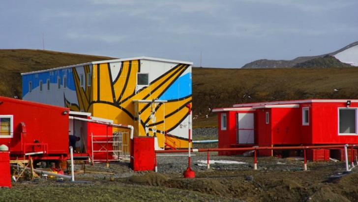 La Mesa de Científicos: ¿Qué investigaciones están haciendo científicos uruguayos en la Antártida?