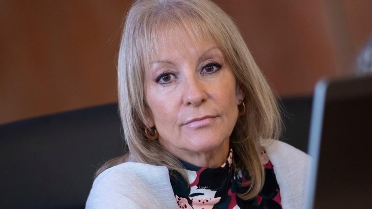Cosse recibió críticas por anunciar que la IM iba a repartir donaciones de militantes del FA