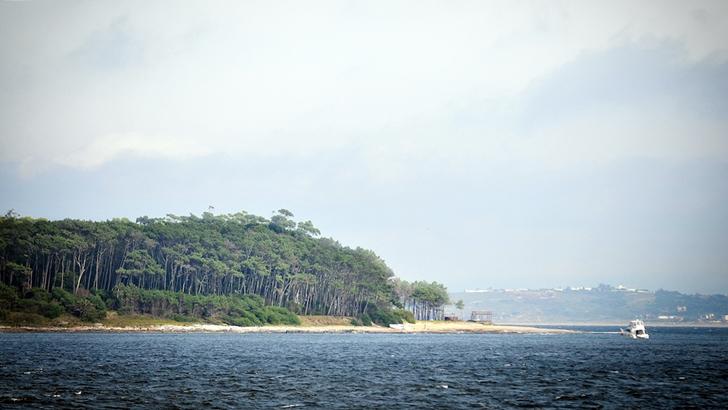 Isla Gorriti: Un paseo en pleno contacto con la naturaleza