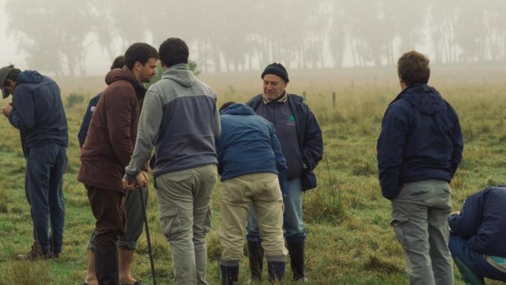 Conexión Interior: ¿Qué son los campos naturales y cómo aportan a la ganadería?