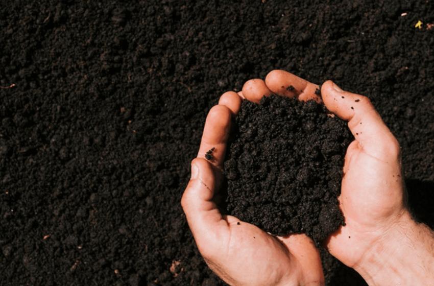 Con la fundadora de Sosei, una empresa dedicada a desarrollar «soluciones regenerativas para el agro»