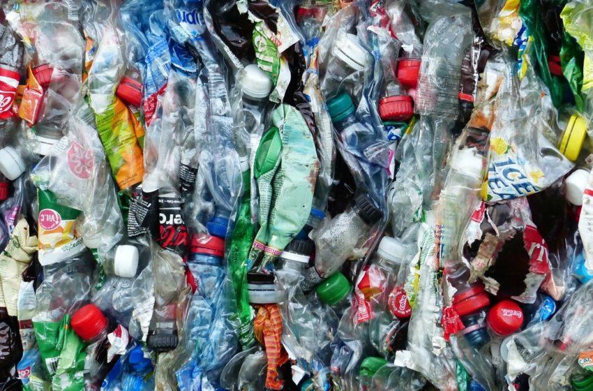 La Mesa Verde. Plásticos de un solo uso en Uruguay: ¿Cómo bajar su consumo y aumentar el reciclaje?